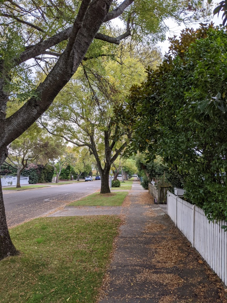Photo of a footpath in autumn with yellow leaves on the ground and white picket fence alongside